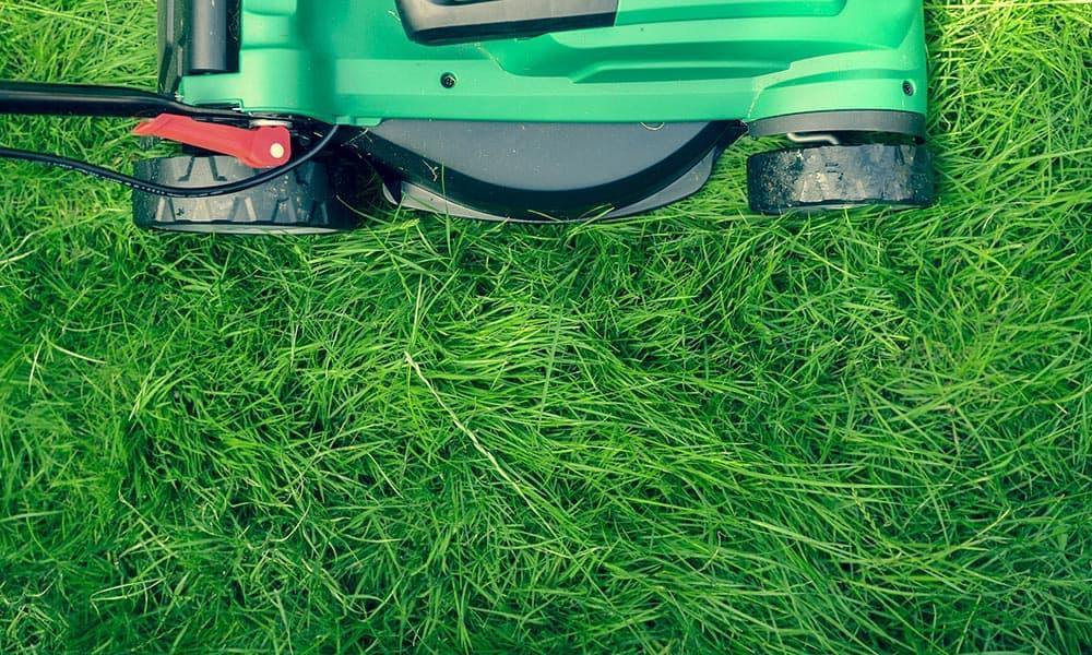 Bekannt Rasenmäher mit Kabel oder Akku – Preis und Leistung – Hobby EU46